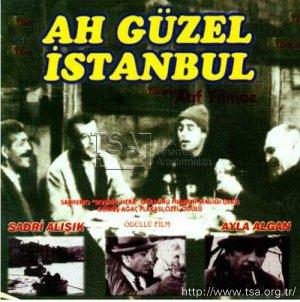 ah_guzel_istanbul_1966.jpg
