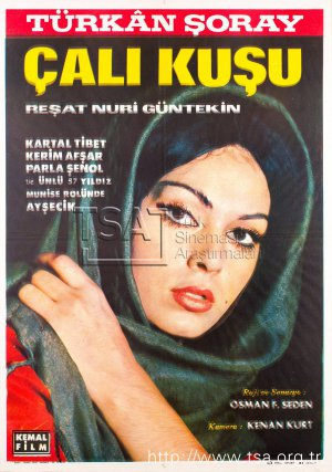 calikusu_1966 (2).jpg
