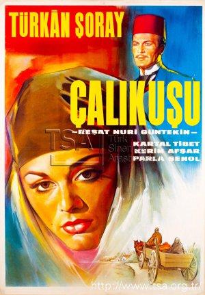 calikusu_1966.jpg