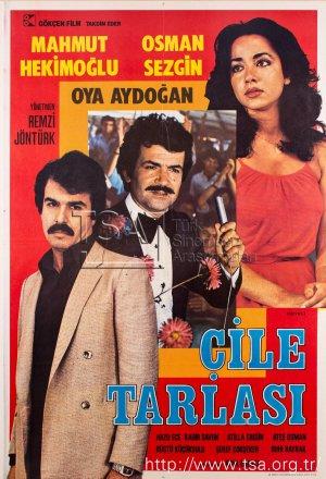 cile_tarlasi_1980.jpg